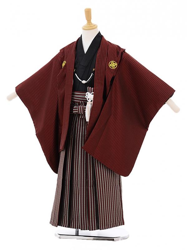 七五三レンタル(5歳男の子袴)5211花うさぎエンジ色ストライプ紋付