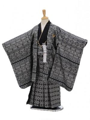 七五三レンタル(5男袴)5100ひさかたろまんシルバ-ラメ