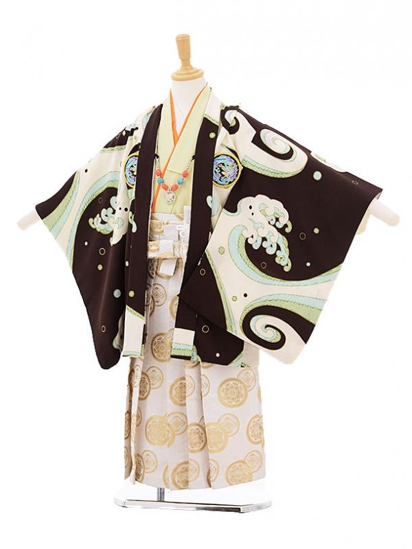 七五三レンタル(5歳男の子袴)5231ぷちぷり茶色波に龍紋