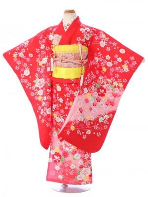 七五三(7歳女)7123 正絹 赤地 ピンクぼかし 桜