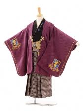 七五三(5歳男袴)D013 カトウオリジナル赤紫
