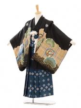 七五三(5歳男袴)D018 黒地鷹に松×袴ブルー