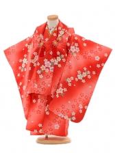 七五三(3歳女被布)D045 赤桜