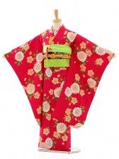 七五三(7女結び帯)D056 紅色桜花