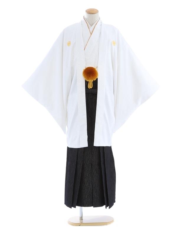 紋付袴252/白/黒地ペーズリー