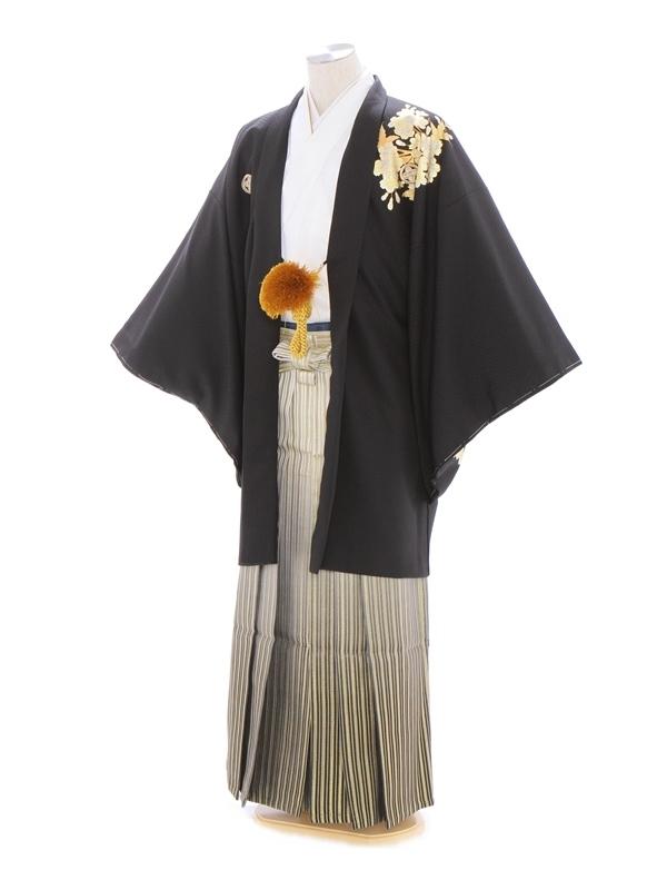 紋付袴342/白黒/ゴールドぼかし
