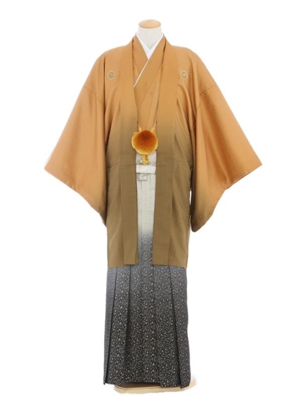 紋付袴217/ブラウン/ゴールドたたき柄ぼかし