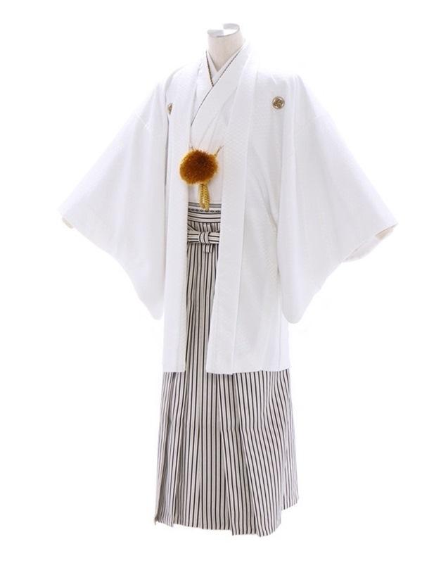 紋付袴236/白/白シルバー黒ぼかし