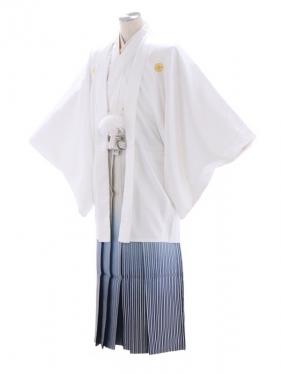 紋付袴245/白/白シルバー青ぼかし
