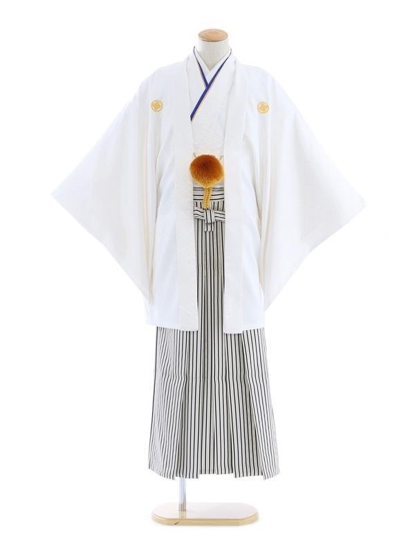 紋付袴265/白/白シルバー黒