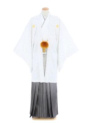 紋付袴295/白/シルバースターぼかし