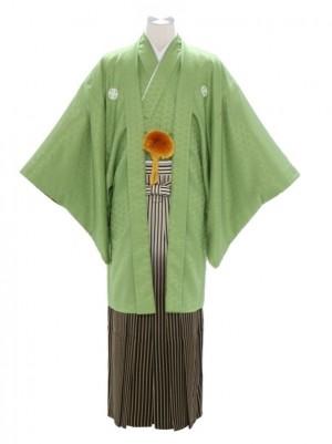 紋付袴206/若葉グリーン/ゴールド白黒ぼかし