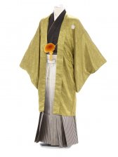 紋付袴331/黒からし色/黒ゴールドぼかし