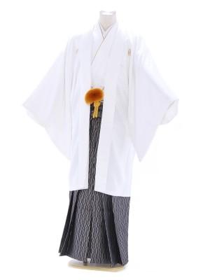 紋付袴158/白/黒グレー/プリズム