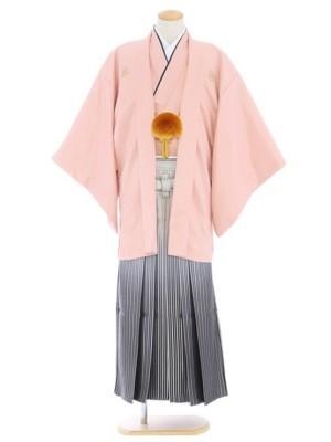 紋付袴149/サーモンピンク/白シルバー裾黒縞ぼかし