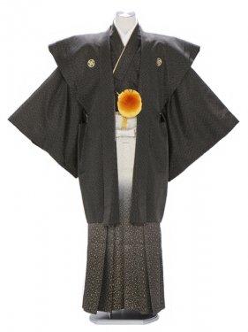 紋付袴227/黒/金たたき