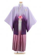 紋付袴271/紫/白シルバーワインレッドぼかし