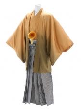 紋付袴218/からし系/白金黒縞