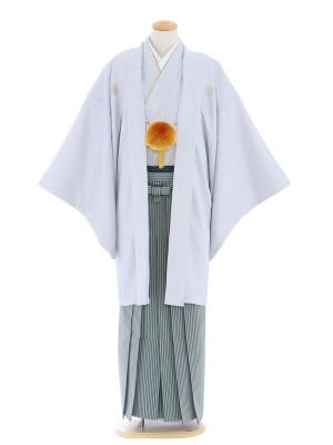 紋付袴173/グレー/グレー深緑縞