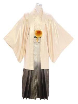 紋付袴281/金/黒金星柄ストライプ