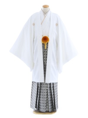 紋付袴179/白/シルバー若松柄