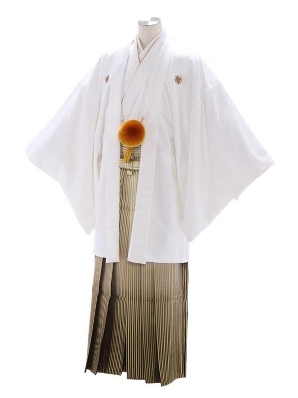 紋付袴216/白/白ゴールド裾黒縞ぼかし