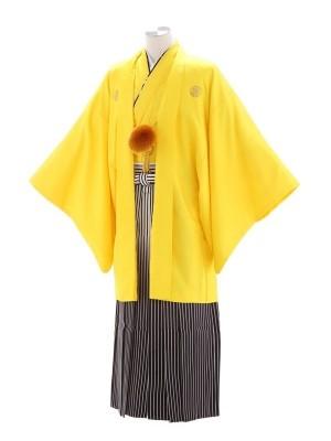 紋付袴186/黄/シルバー太黒ぼかし