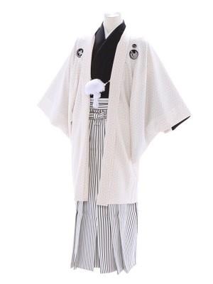 紋付袴286/黒白/白黒ストライプ