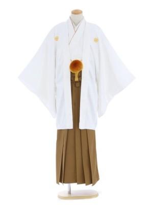 紋付袴246/白/金茶