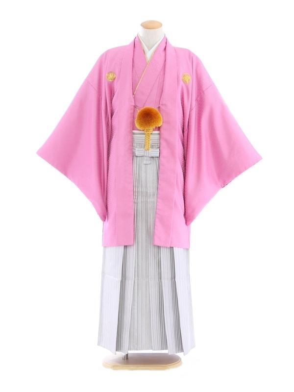 紋付袴203/ピンク/シルバー紫ストライプ