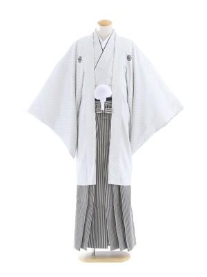 紋付袴80/白/黒シルバー白柄