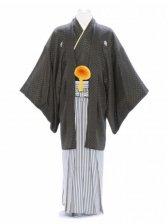紋付袴88/黒/白紺金縞