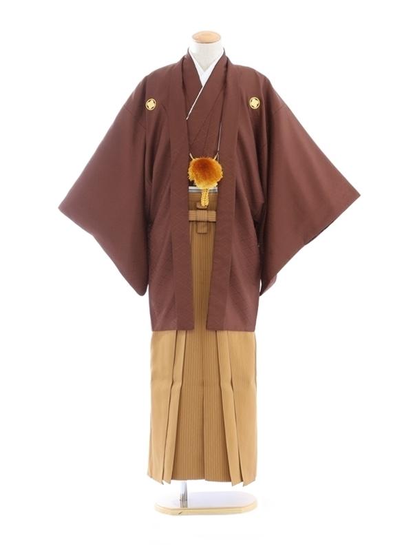紋付袴277/モカブラウン/黄茶縞