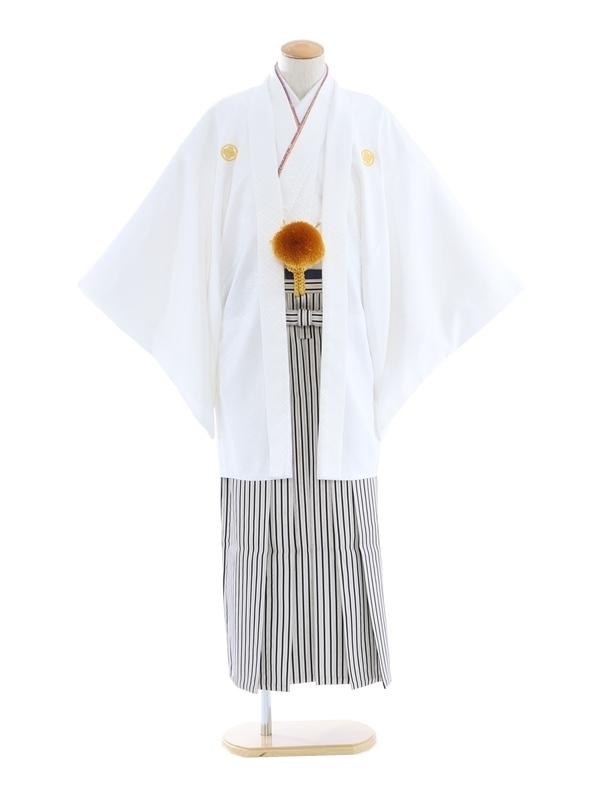紋付袴266/白/白シルバー黒