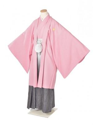 男性用袴・成人式・ピンク武田菱/縞