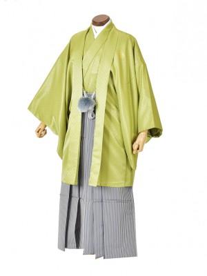男性用袴・成人式・グリーン紋服/縞
