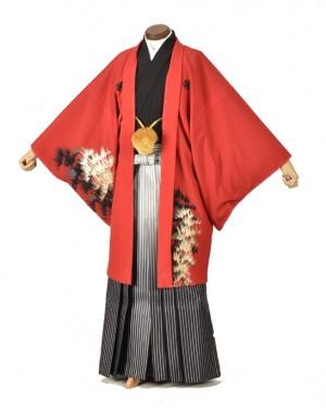 男性用袴・成人式・赤金松鷹8号