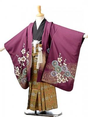 七五三(5歳男袴) 紫地梅兜/蜀江紋袴 K061
