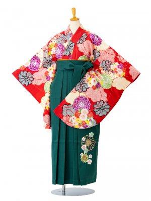 小学生卒業袴レンタル(女子)0038SS赤地に梅ともみじ 袴緑刺繍