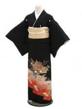 黒留袖レンタル3119赤ぼかし蝶と扇