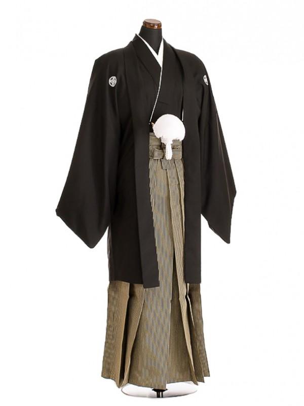 卒業式成人式袴男レンタル090-4/黒紋付/地味袴