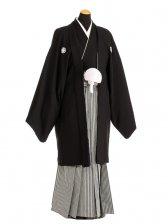 卒業式成人式袴男レンタル091-8/黒紋付/地味袴