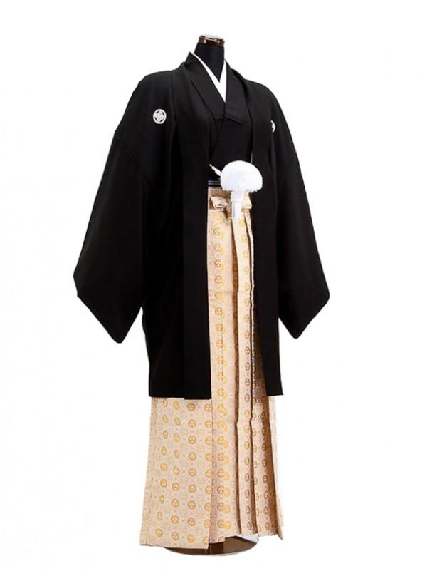 卒業式成人式袴男レンタル043-3/黒/ベージュ菊袴