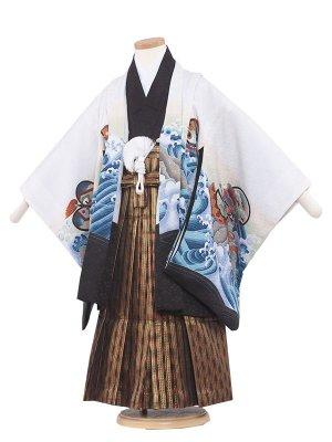 七五三レンタル(5歳男の子袴)5088A 白/鷹と荒波