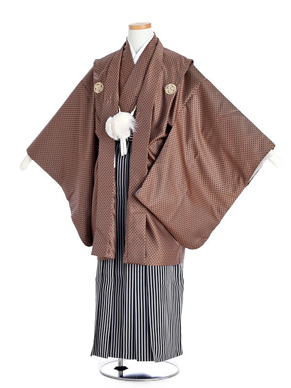 ジュニア男児紋付茶×縞袴tm13