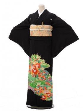 黒留袖レンタルC2101 緑に牡丹花車