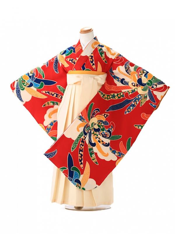卒園式 ジュニア袴(女の子) 紅一点 正絹 赤 7258