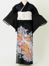 留袖絽206クジャク花々