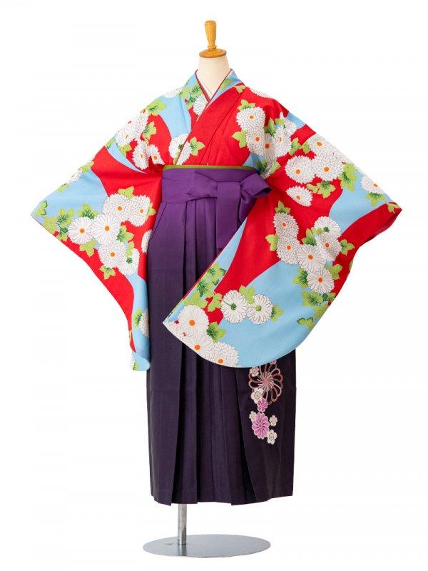 卒業袴0035  水色地に白い菊 袴紫ぼかし刺繍