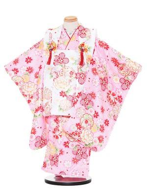 七五三レンタル(3歳女被布)3030 白×ピンク 牡丹